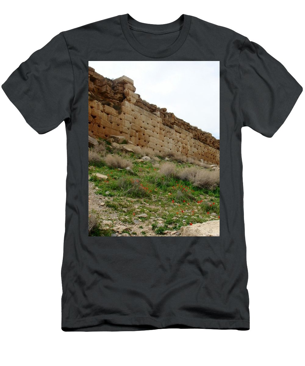 Pasargadae Men's T-Shirt (Athletic Fit) featuring the photograph Iran Poppies At Pasargadea by Lois Ivancin Tavaf