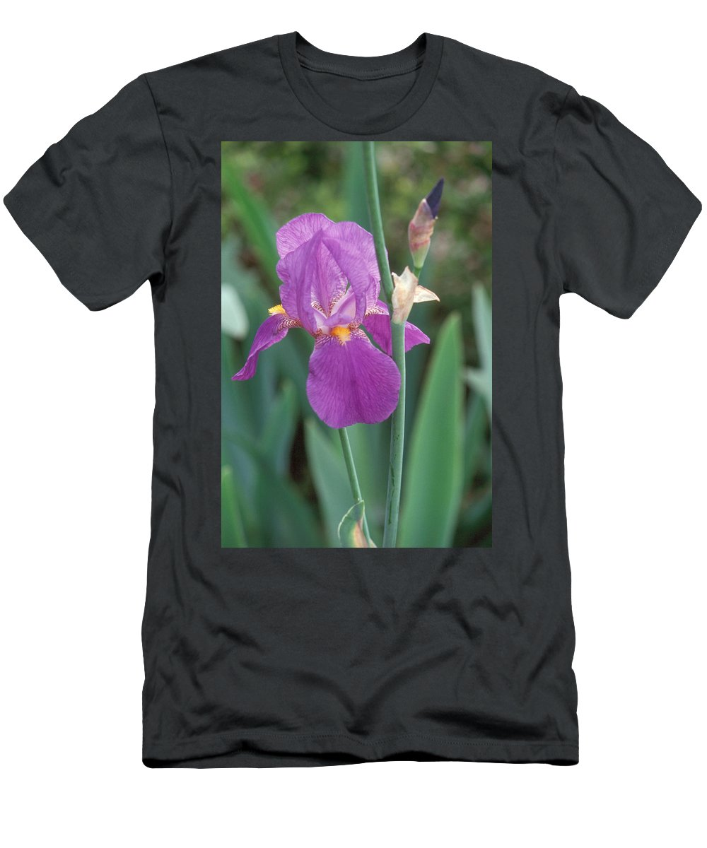 Iris Men's T-Shirt (Athletic Fit) featuring the photograph Iris 6 by Andy Shomock