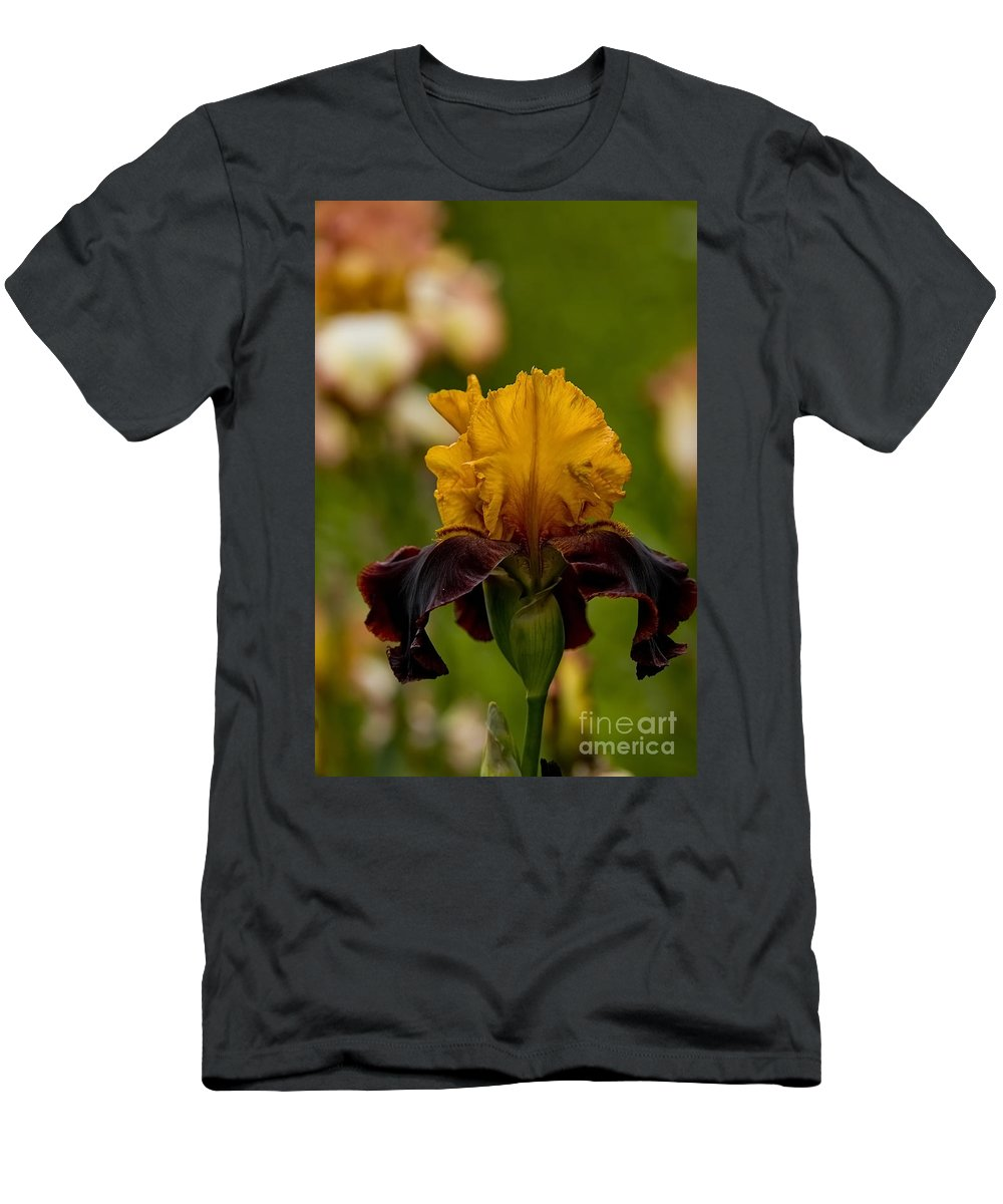 Iris Men's T-Shirt (Athletic Fit) featuring the photograph Iris Pictures 149 by World Wildlife Photography