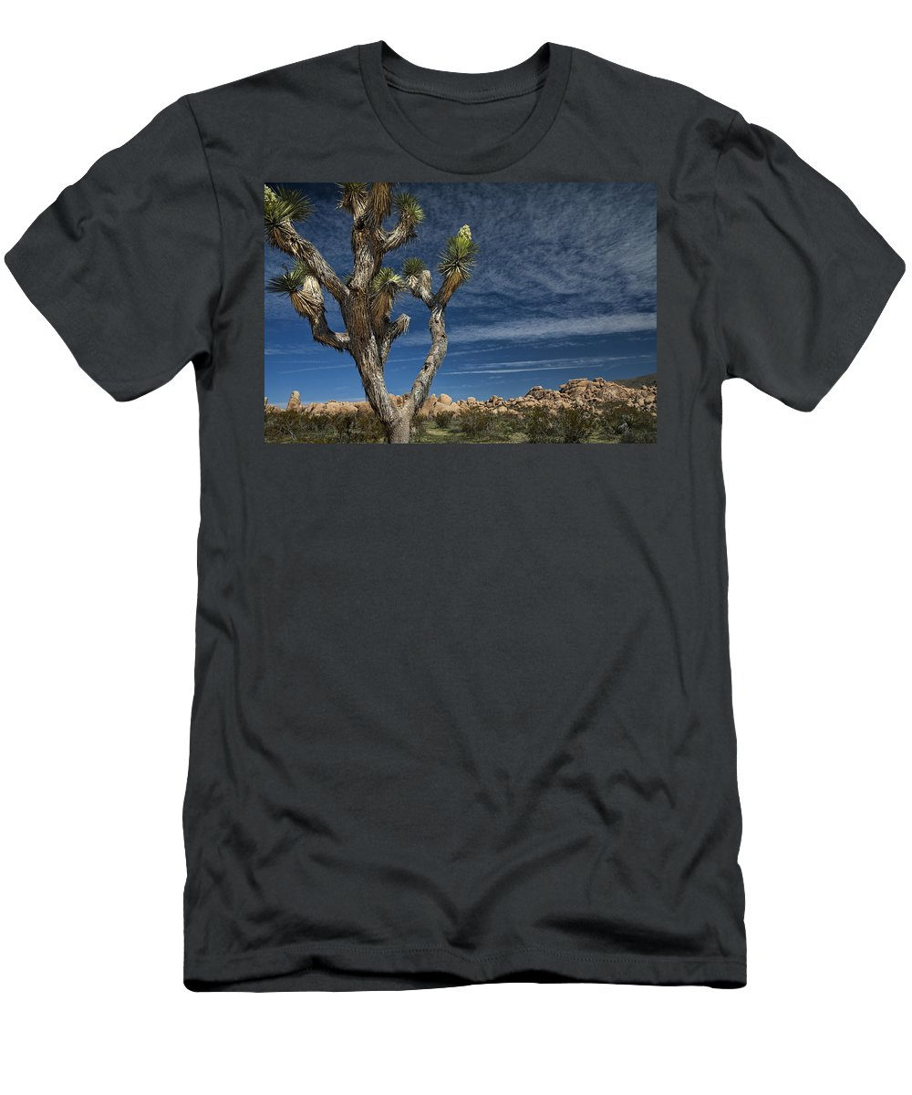 Art Men's T-Shirt (Athletic Fit) featuring the photograph Joshua Tree In Joshua Tree National Park No. 279 by Randall Nyhof