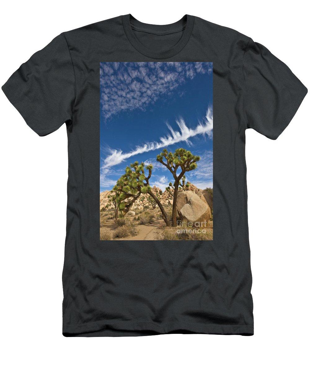 00559244 Men's T-Shirt (Athletic Fit) featuring the photograph Joshua Trees In Joshua Tree Natl Park by Yva Momatiuk and John Eastcott