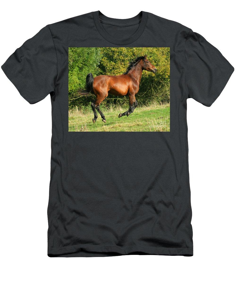 Horse Men's T-Shirt (Athletic Fit) featuring the photograph Jump Jump Jump by Angel Ciesniarska