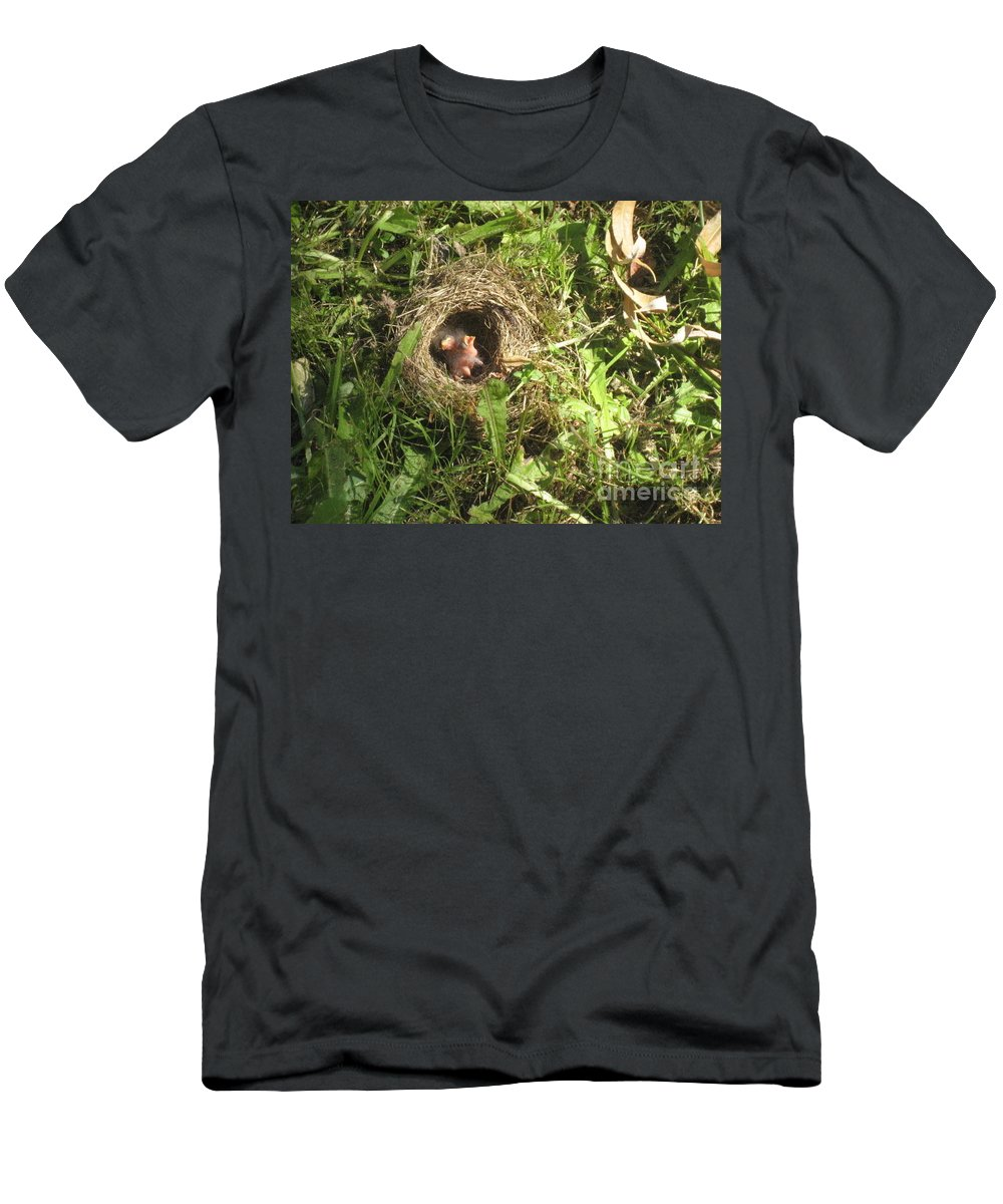 Junco Birds In Grass Men's T-Shirt (Athletic Fit) featuring the photograph Junco Nest In The Lawn by Kym Backland