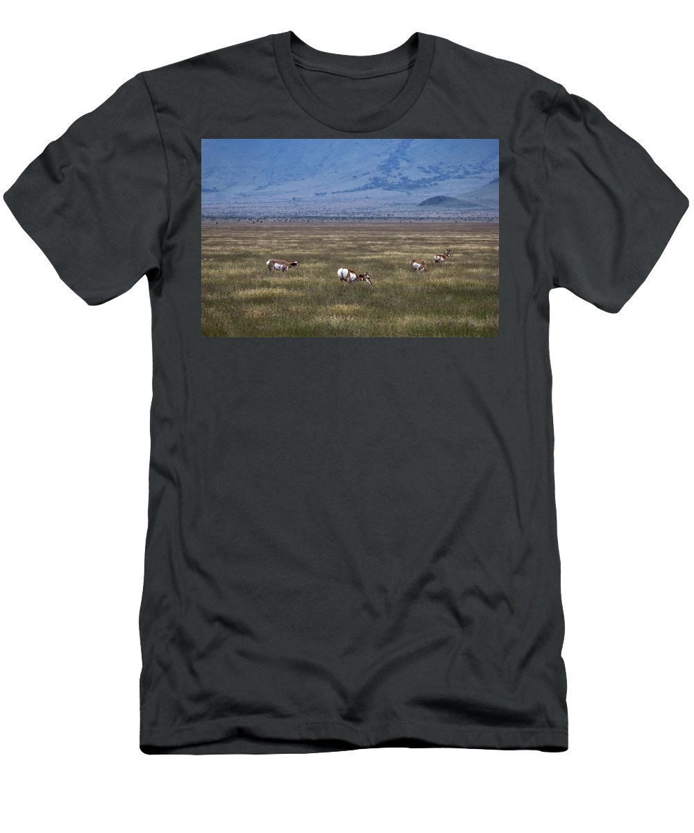 Pronghorn Men's T-Shirt (Athletic Fit) featuring the photograph Just Hanging Out by Renny Spencer