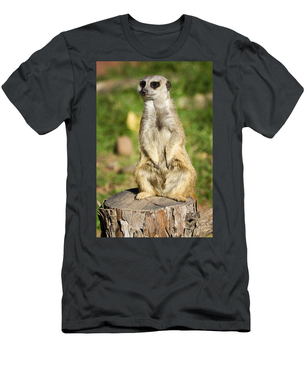 Alert Men's T-Shirt (Athletic Fit) featuring the photograph Keeping Guard by Ricky Barnard