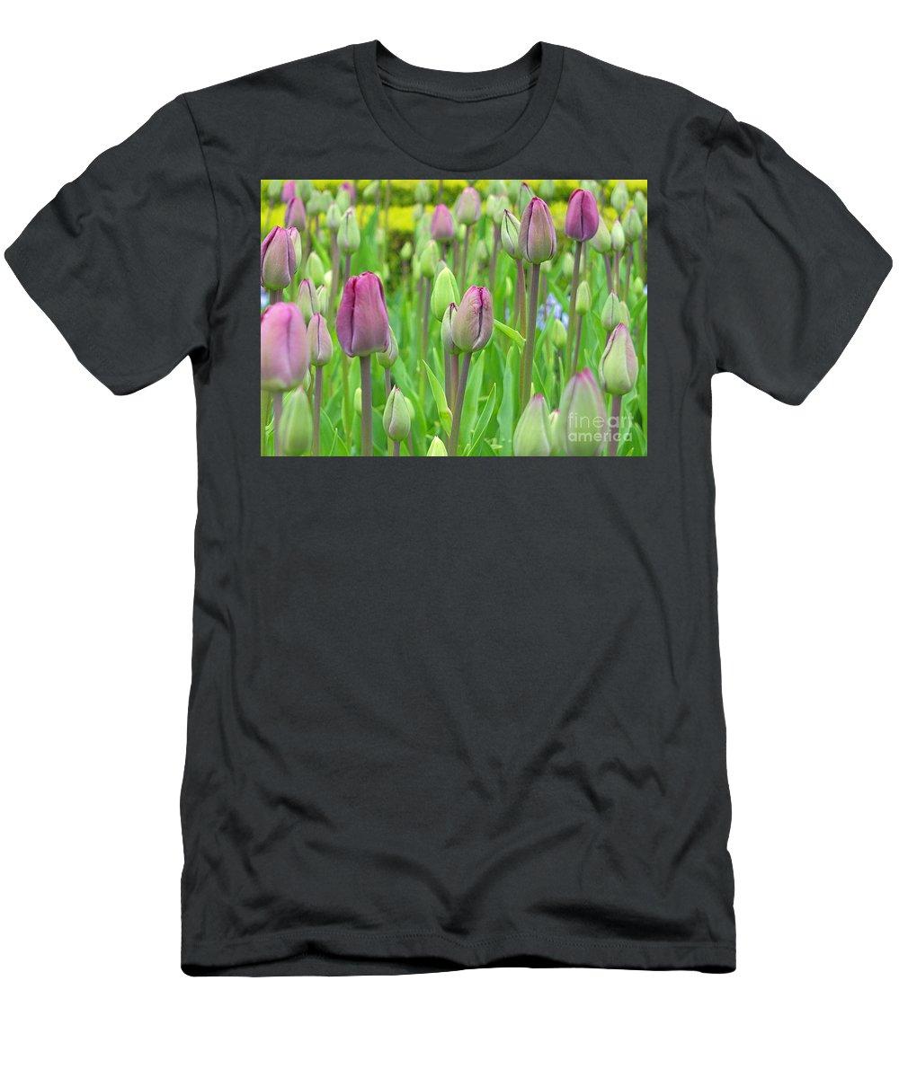 Keukenhof Gardens Men's T-Shirt (Athletic Fit) featuring the photograph Keukenhof Gardens 12 by Mike Nellums