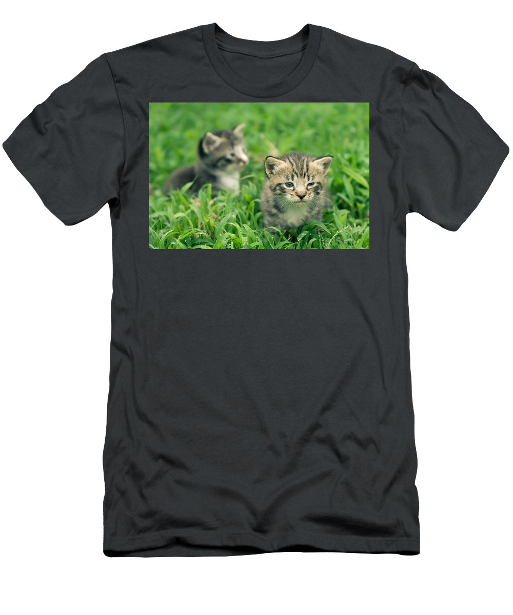 Animal Men's T-Shirt (Athletic Fit) featuring the photograph Kitty In Grass by Alex Grichenko