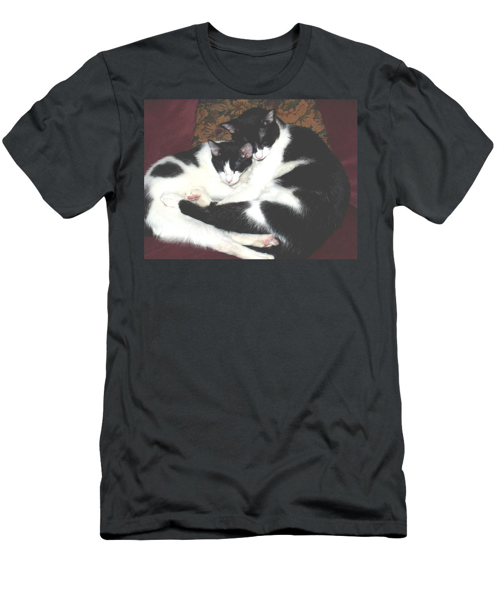 Brothers Men's T-Shirt (Athletic Fit) featuring the photograph Kitty Love by Marna Edwards Flavell