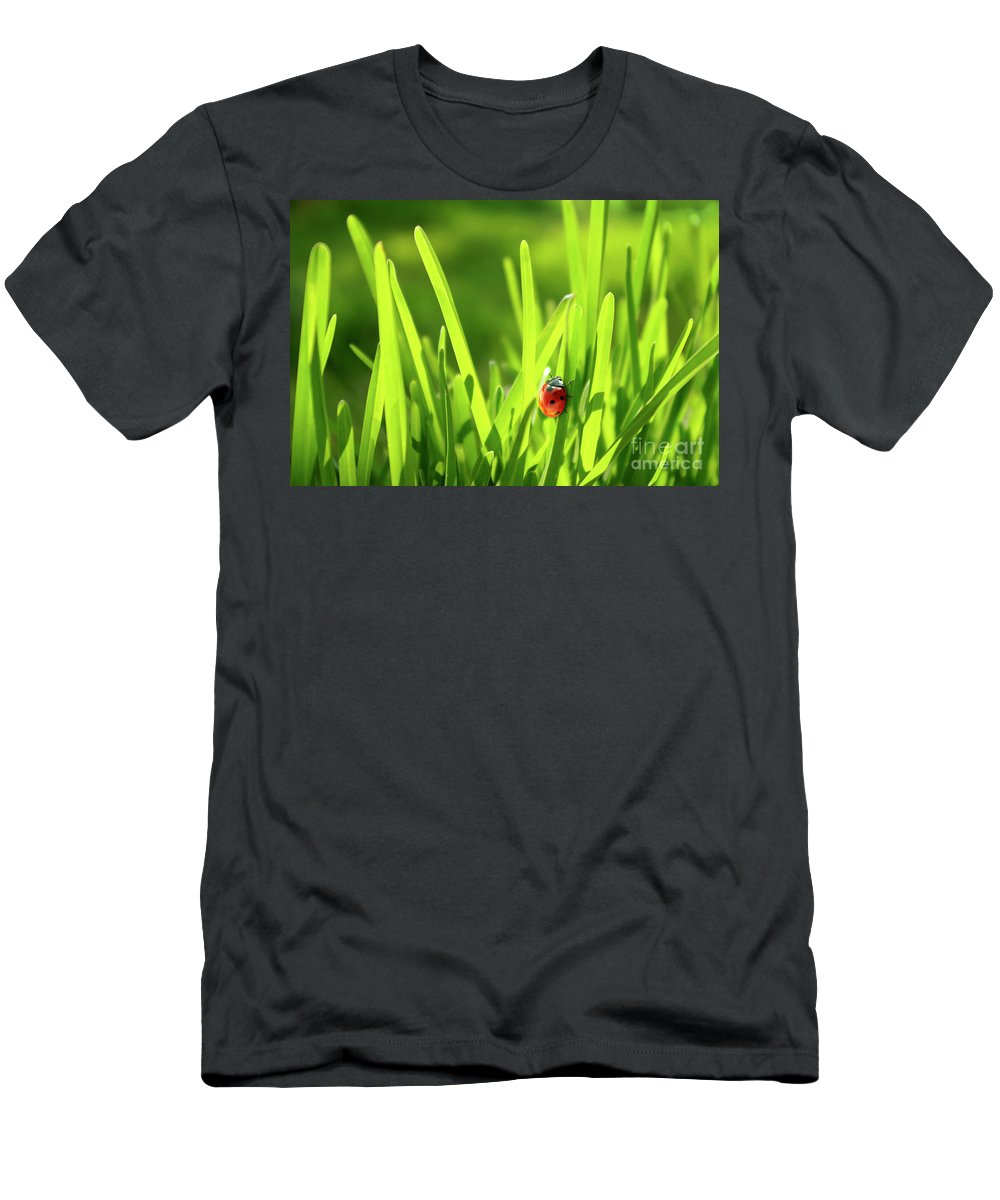 Autumn Men's T-Shirt (Athletic Fit) featuring the photograph Ladybug In Grass by Carlos Caetano