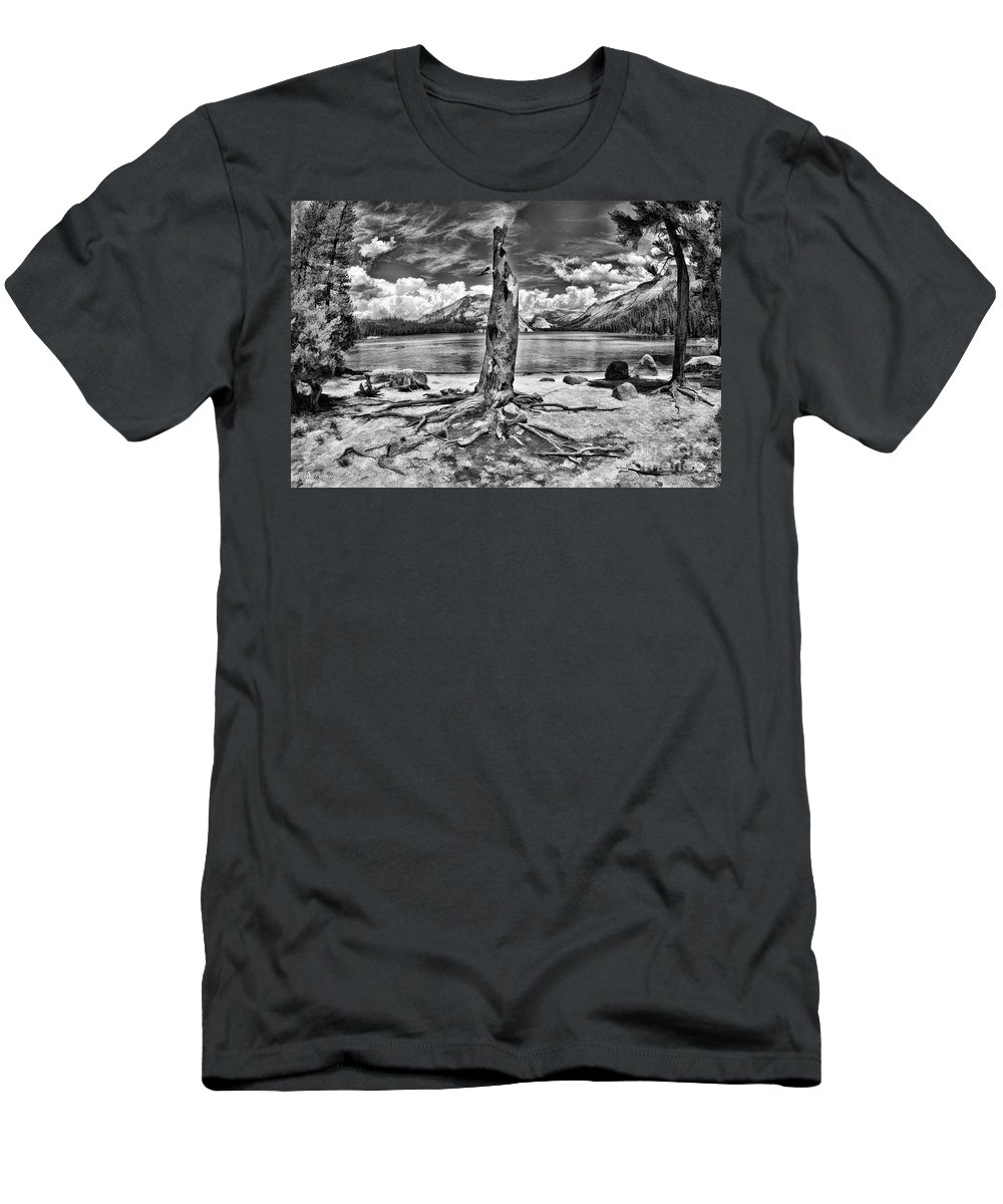 Lake Tenaya Men's T-Shirt (Athletic Fit) featuring the photograph Lake Tenaya Giant Stump Black And White by Blake Richards