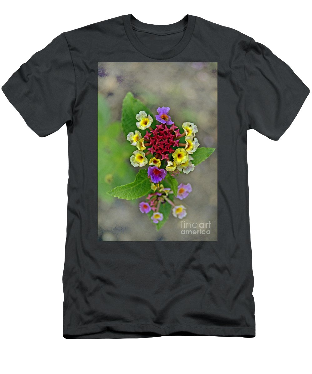 Pictures Of Flowers Men's T-Shirt (Athletic Fit) featuring the photograph Last Blooms Number Two by Skip Willits