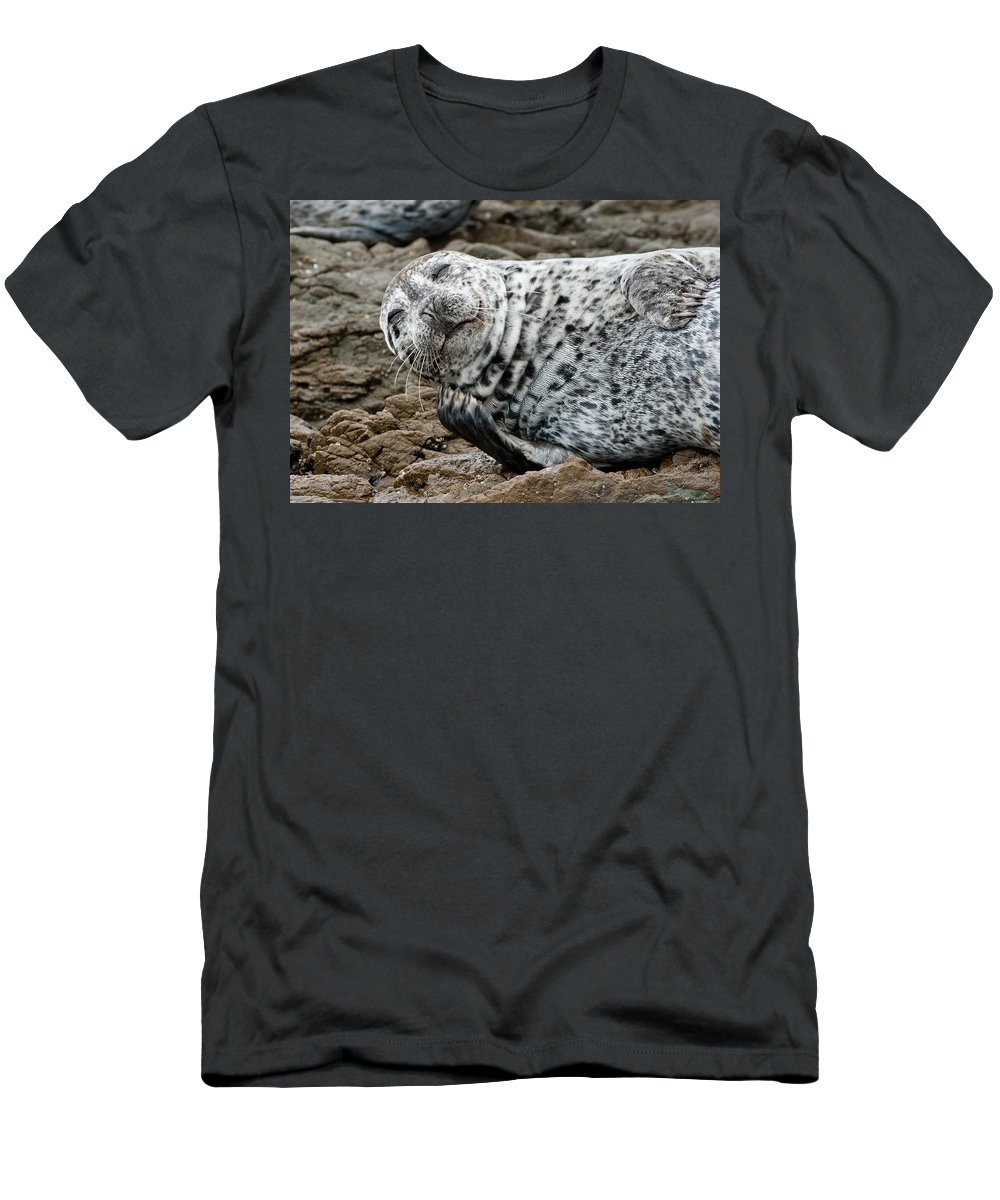 Seal Men's T-Shirt (Athletic Fit) featuring the photograph Laughing Seal by Greg Nyquist