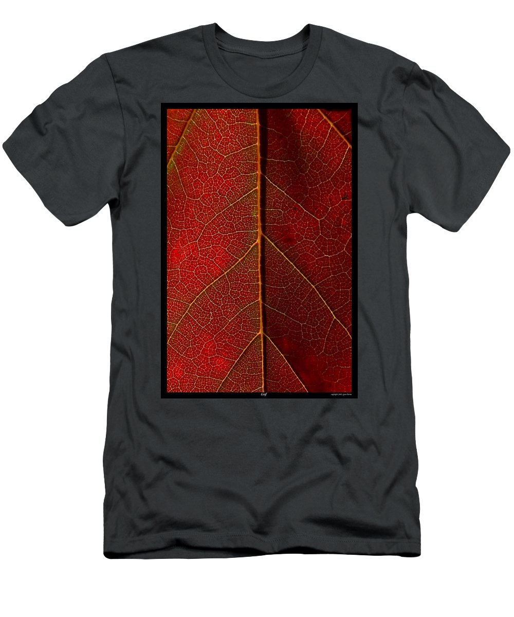 Leaf Men's T-Shirt (Athletic Fit) featuring the photograph Leaf by Gene Tatroe