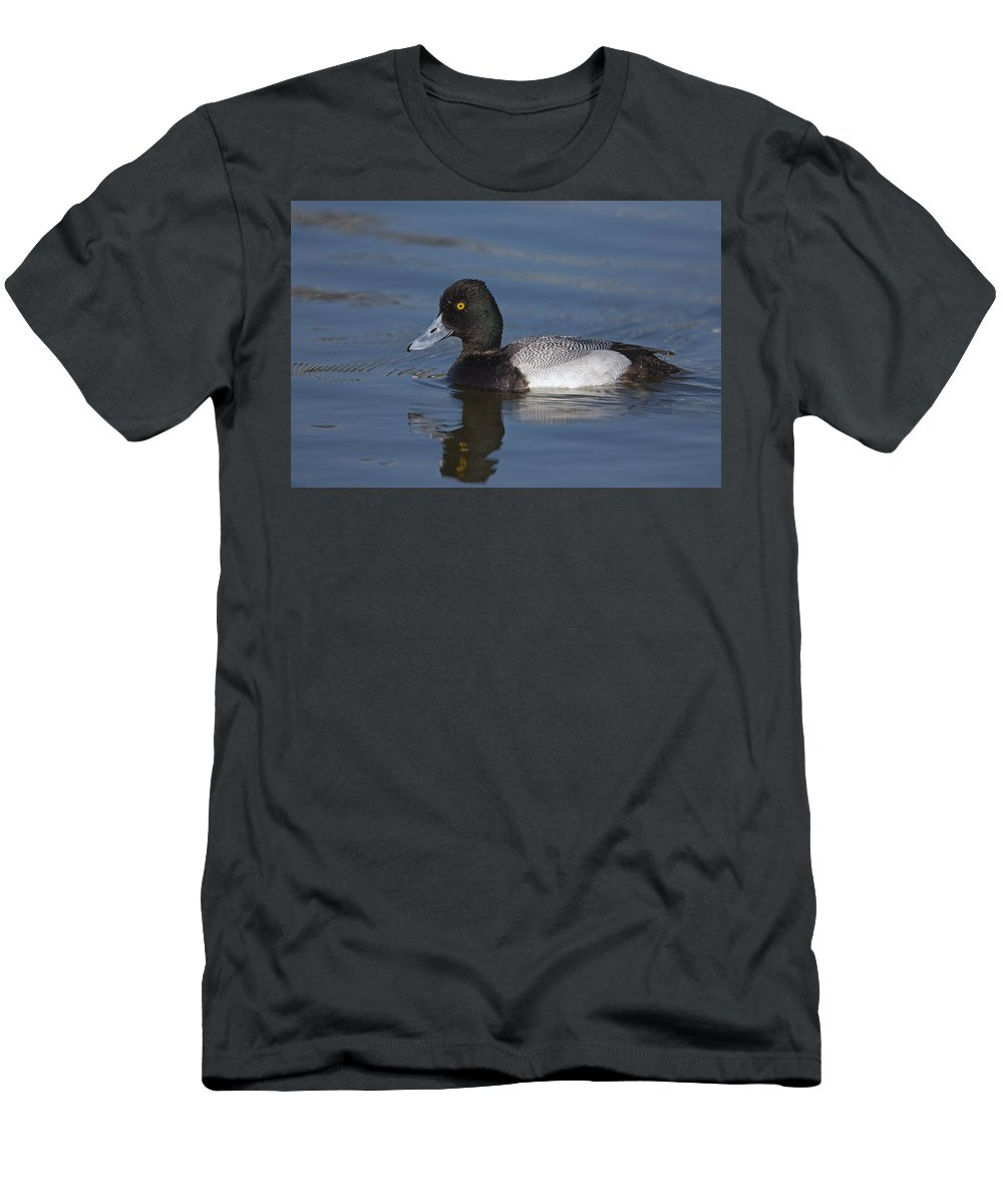 Feb0514 Men's T-Shirt (Athletic Fit) featuring the photograph Lesser Scaup Male by Tom Vezo