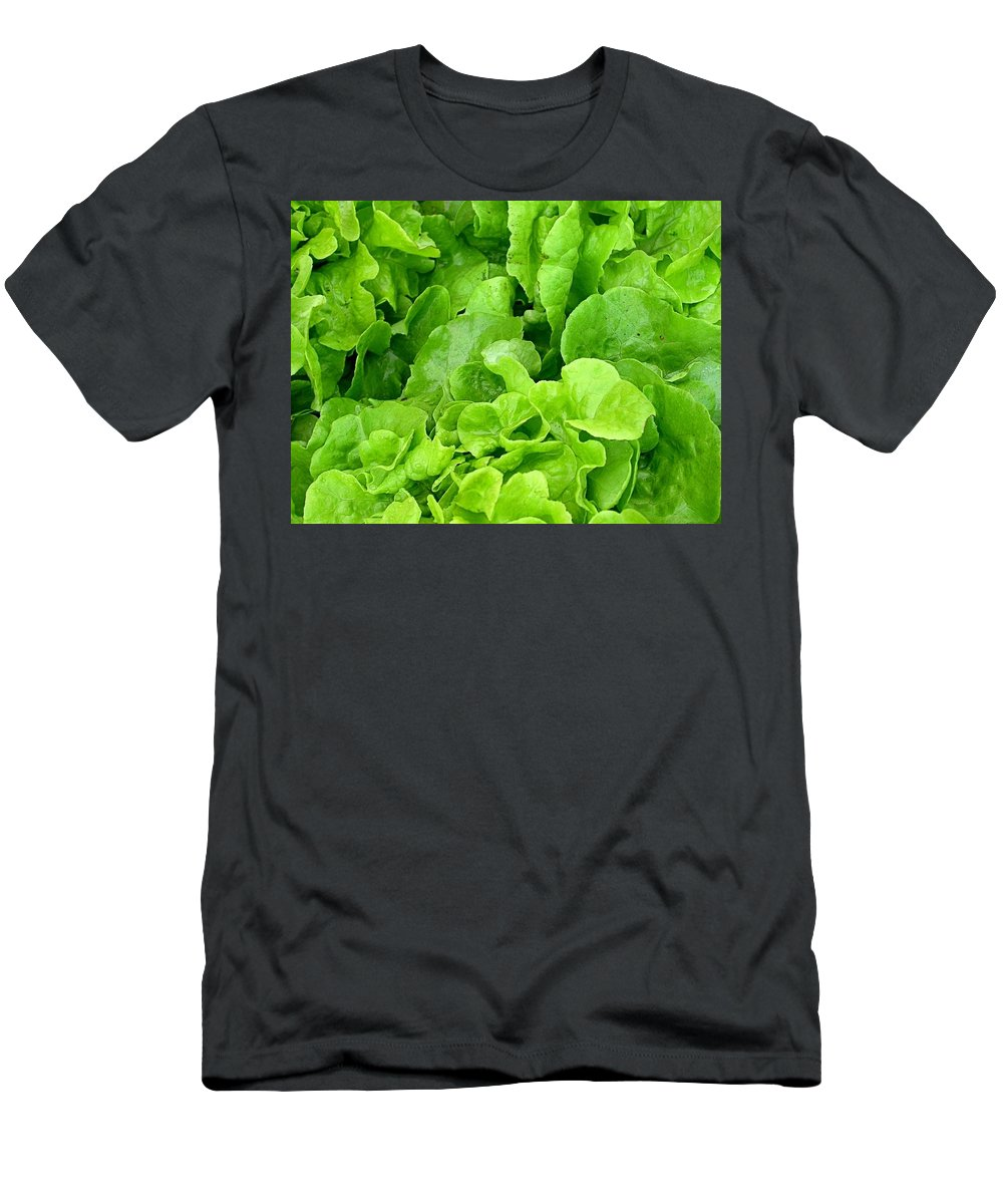 Lettuce Picture Men's T-Shirt (Athletic Fit) featuring the photograph Lettuce Sing by Cynthia Wallentine