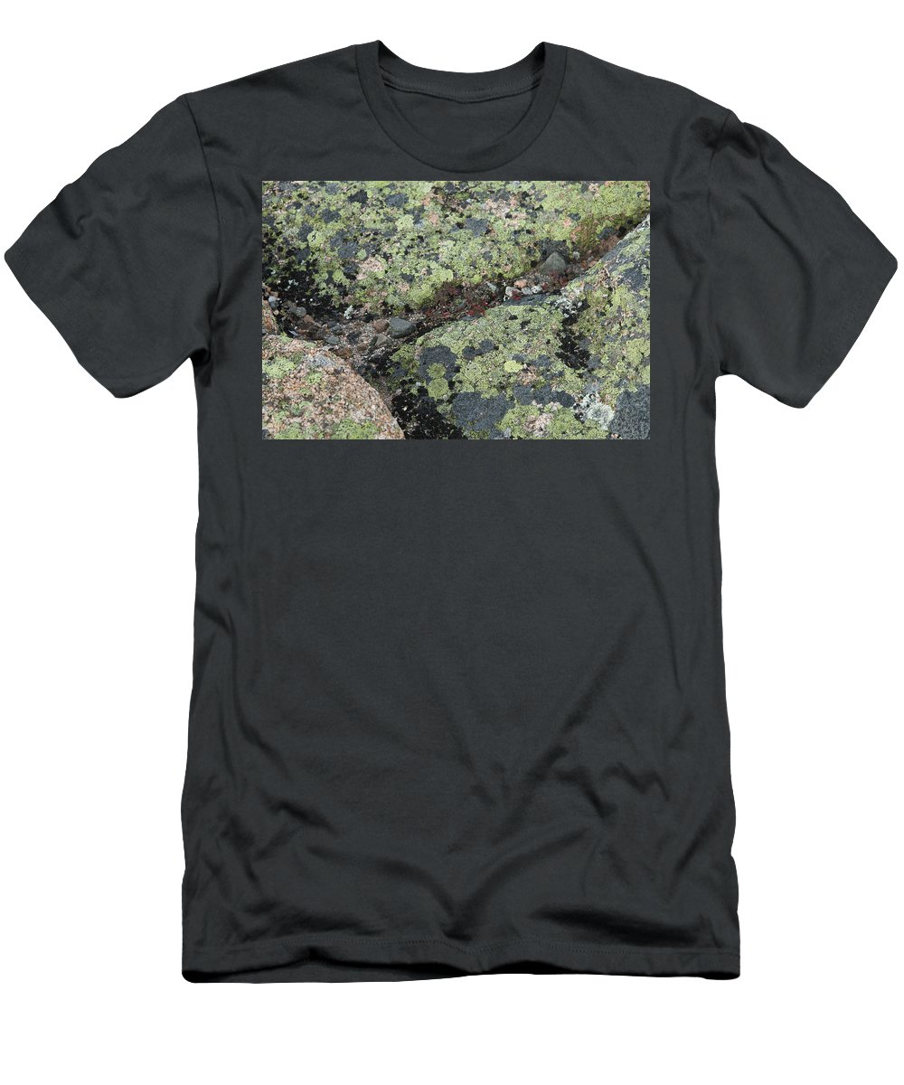 Lichen Men's T-Shirt (Athletic Fit) featuring the photograph Lichen And Granite Img 6187 by Greg Kluempers