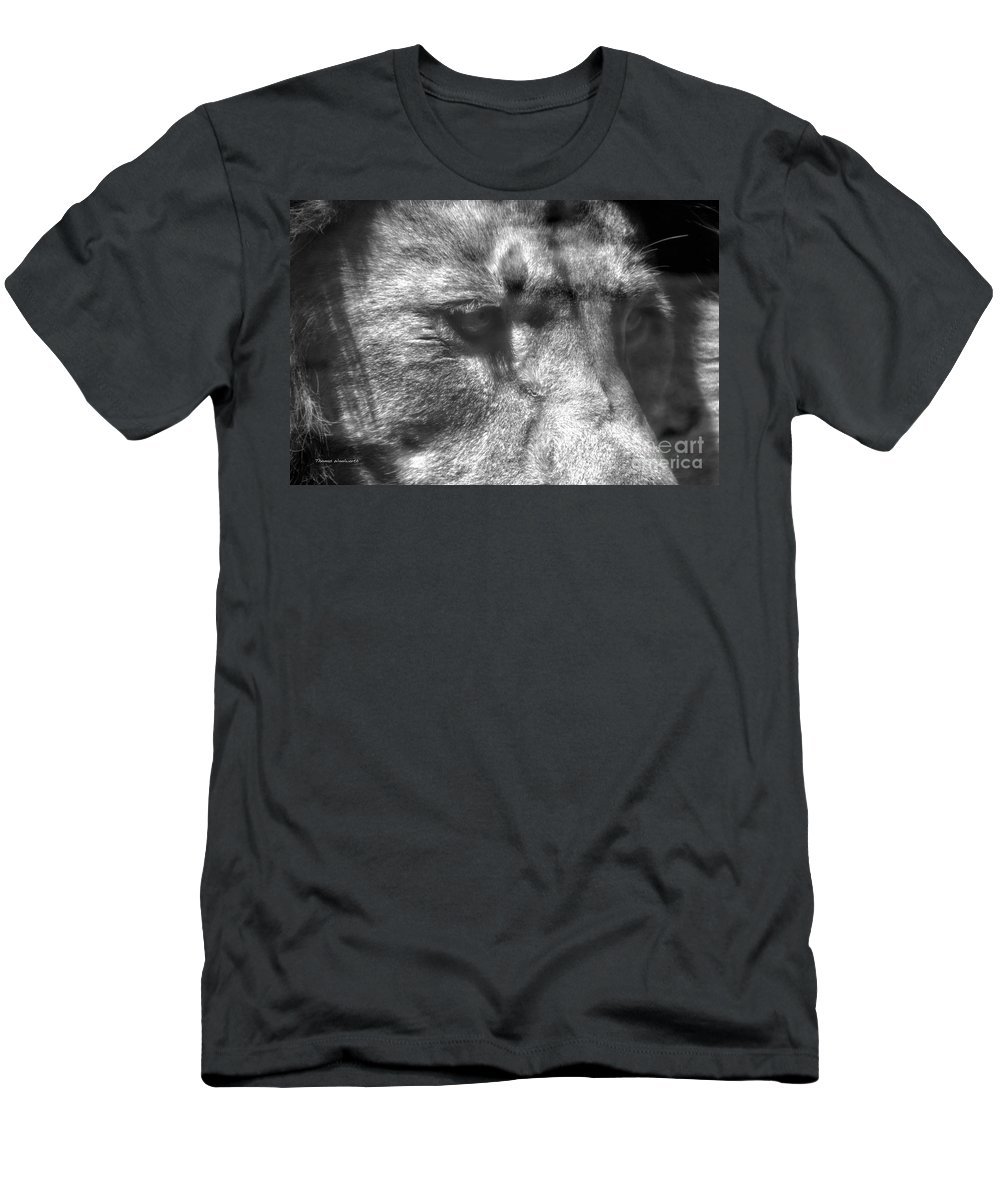 Animals Men's T-Shirt (Athletic Fit) featuring the photograph Lion Eyes by Thomas Woolworth