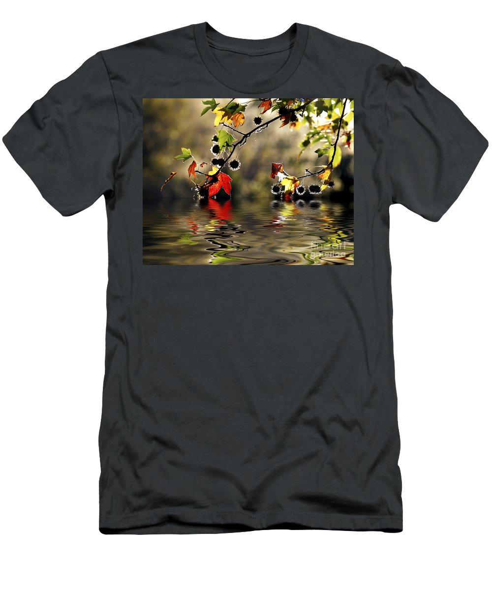 Liquidambar Maple Autumn Fall Flood Water Reflection Men's T-Shirt (Athletic Fit) featuring the photograph Liquidambar In Flood by Sheila Smart Fine Art Photography