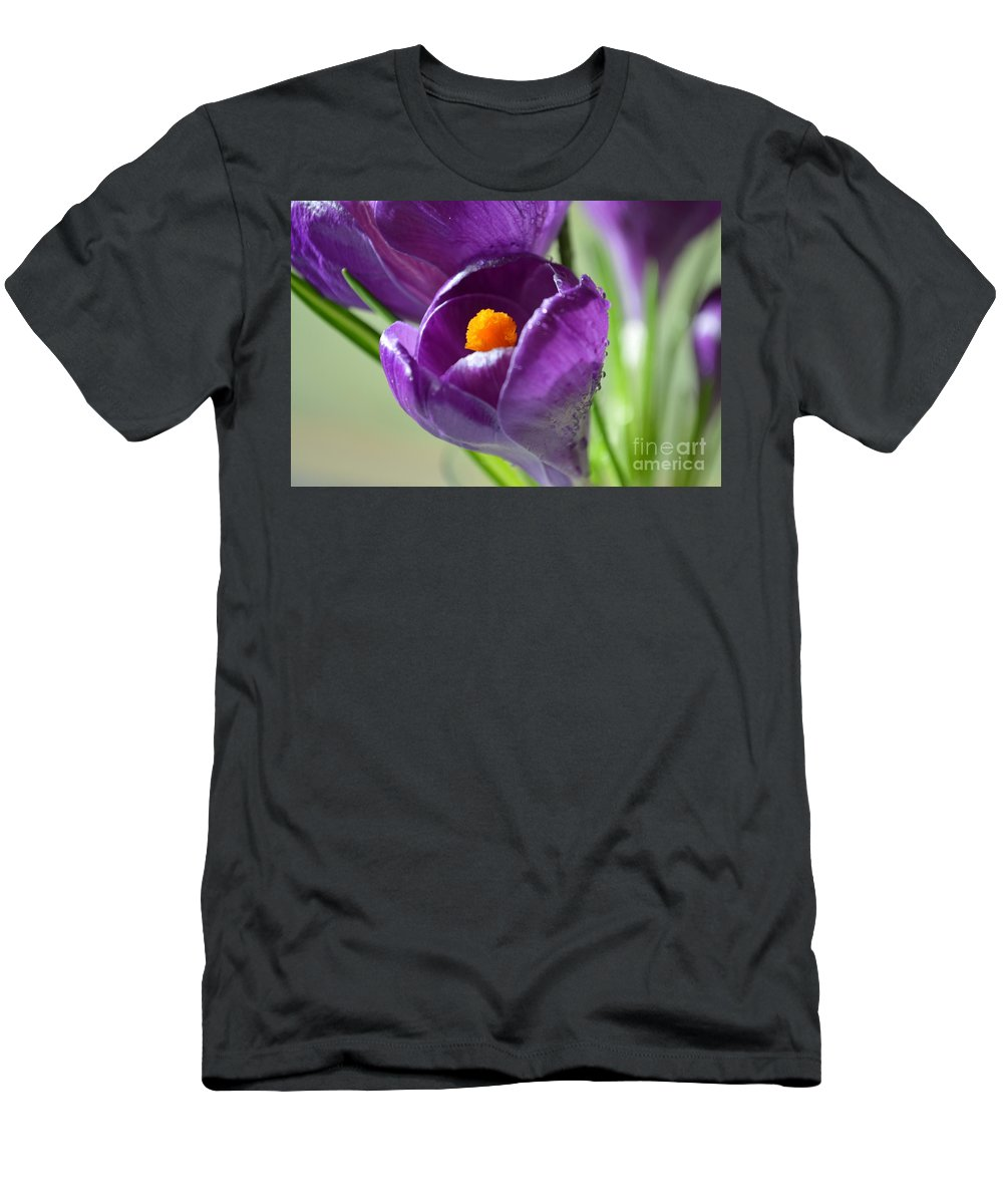Crocus Men's T-Shirt (Athletic Fit) featuring the photograph Little Lila Headline by Felicia Tica