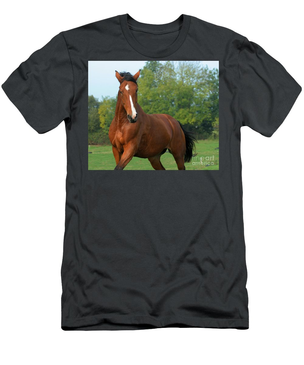 Horse Men's T-Shirt (Athletic Fit) featuring the photograph Look How Pretty I Am by Angel Ciesniarska