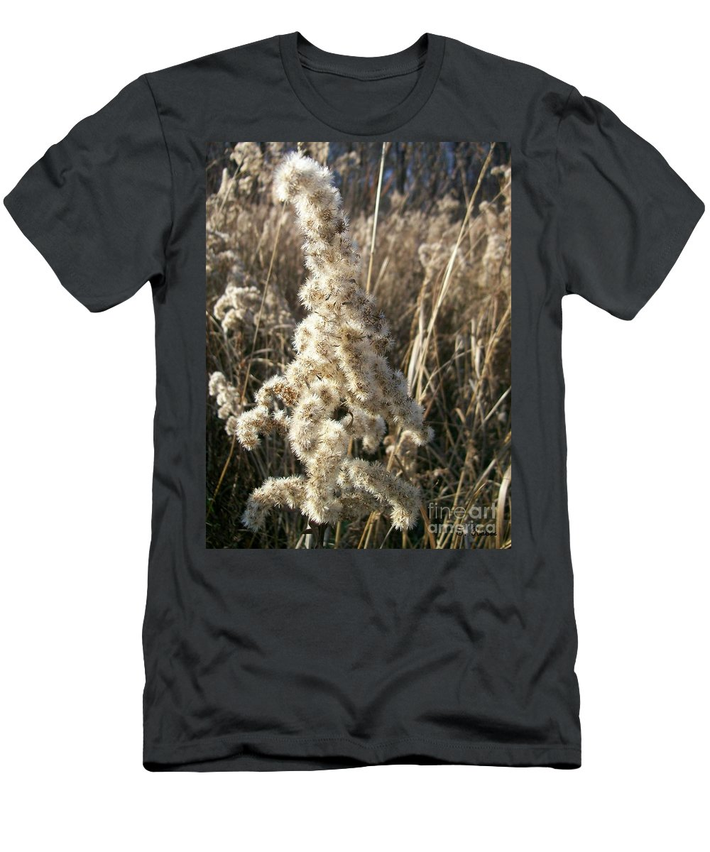 Weed Men's T-Shirt (Athletic Fit) featuring the photograph Looks Like Cotton by Sara Raber