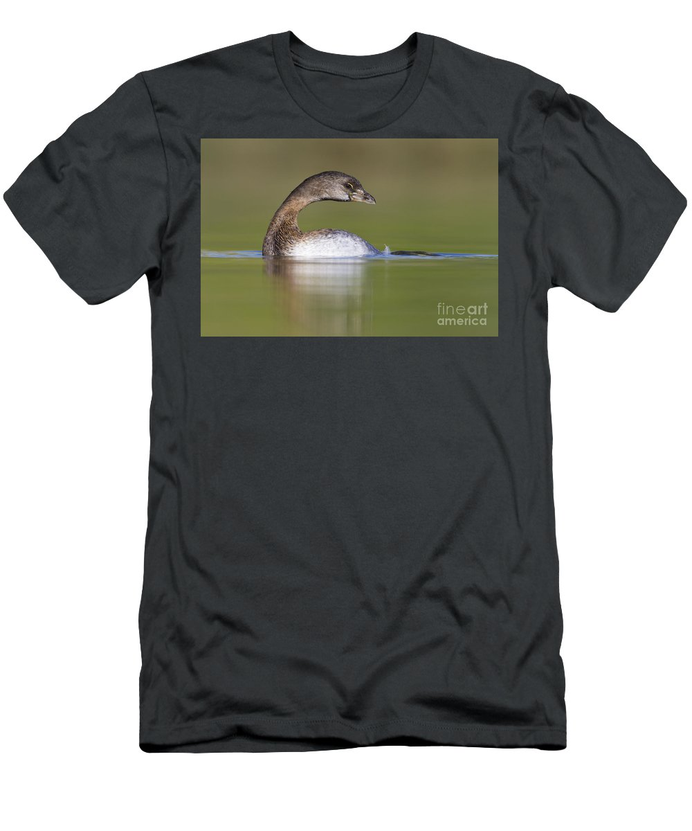 Grebe Men's T-Shirt (Athletic Fit) featuring the photograph Loss-neck Grebe by Bryan Keil
