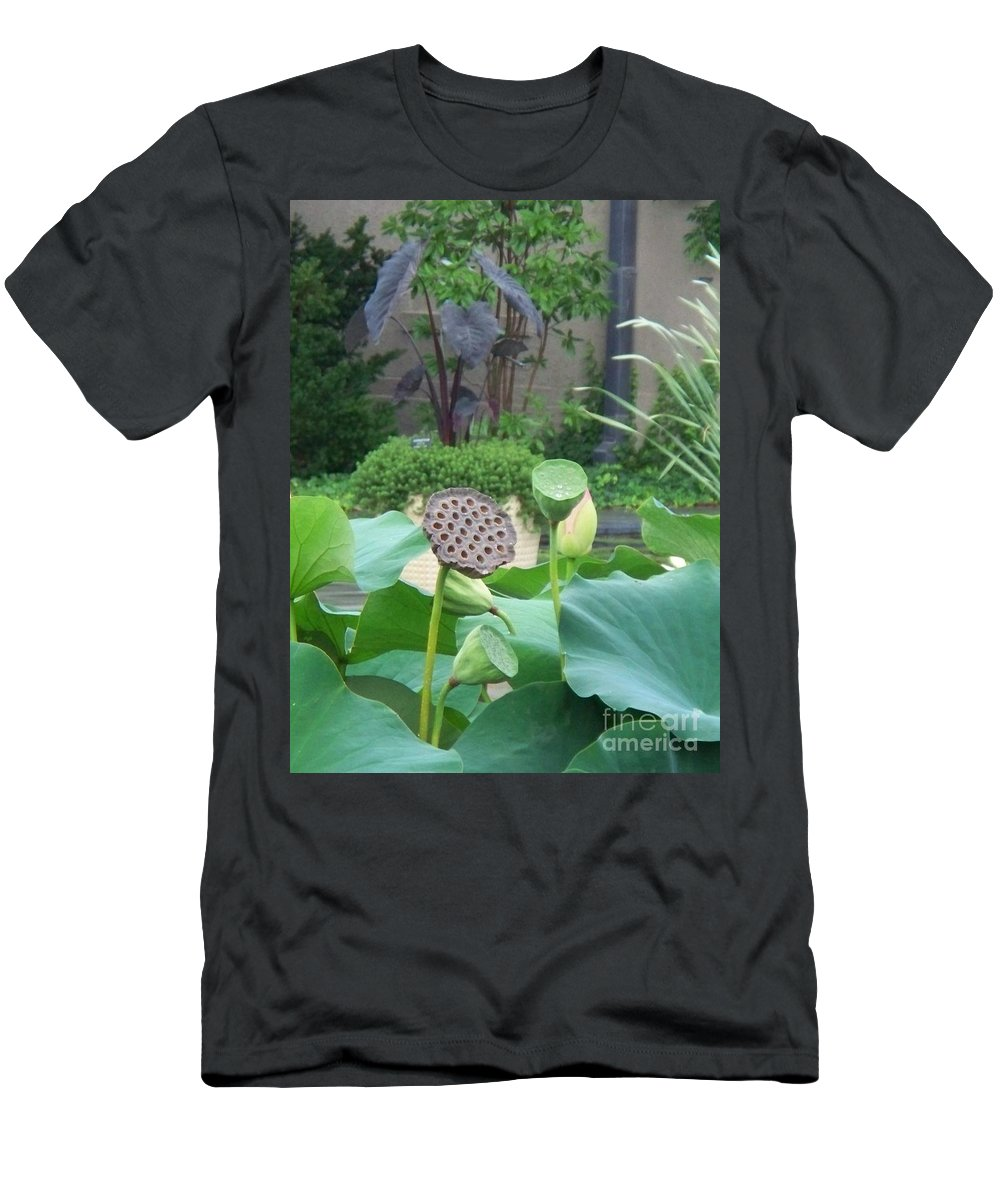 Water Lilies Men's T-Shirt (Athletic Fit) featuring the photograph Lotus Flower In Lily Pond by Eric Schiabor