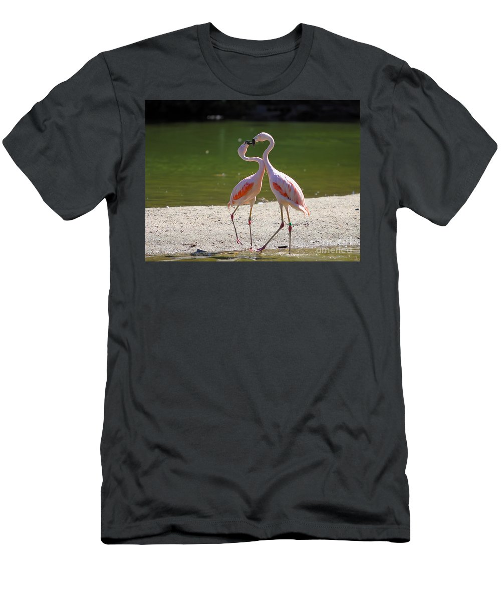 Flamingo Men's T-Shirt (Athletic Fit) featuring the photograph Love by Rick Kuperberg Sr