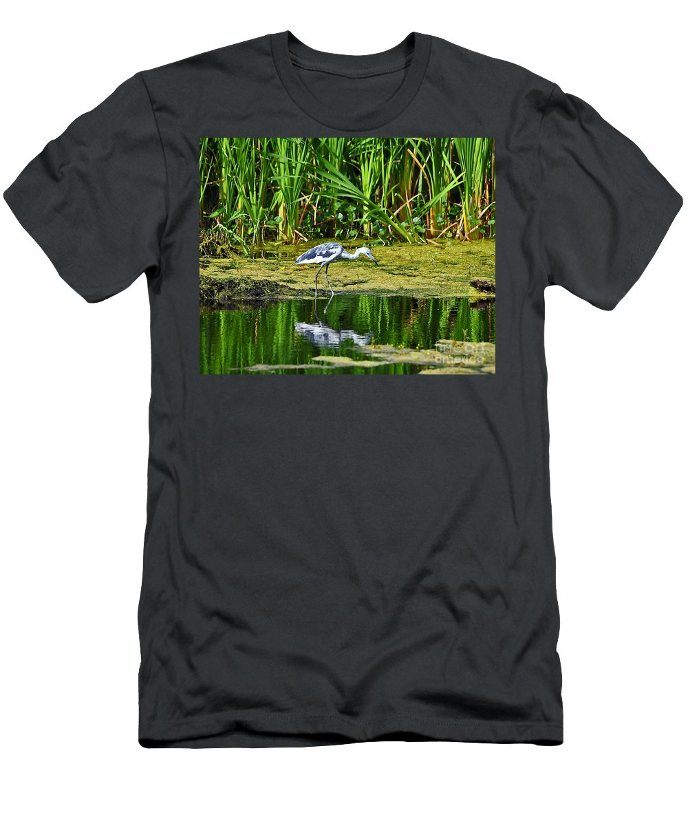 Heron Men's T-Shirt (Athletic Fit) featuring the photograph Lovely Little Blue by Al Powell Photography USA