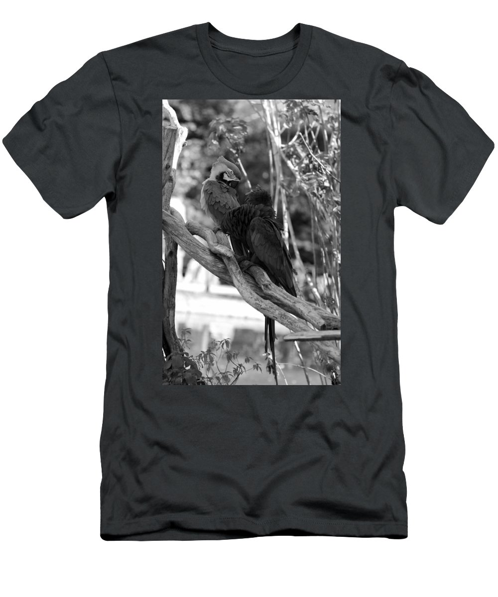 Macaws Men's T-Shirt (Athletic Fit) featuring the photograph Macaws Of Color B W 15 by Rob Hans