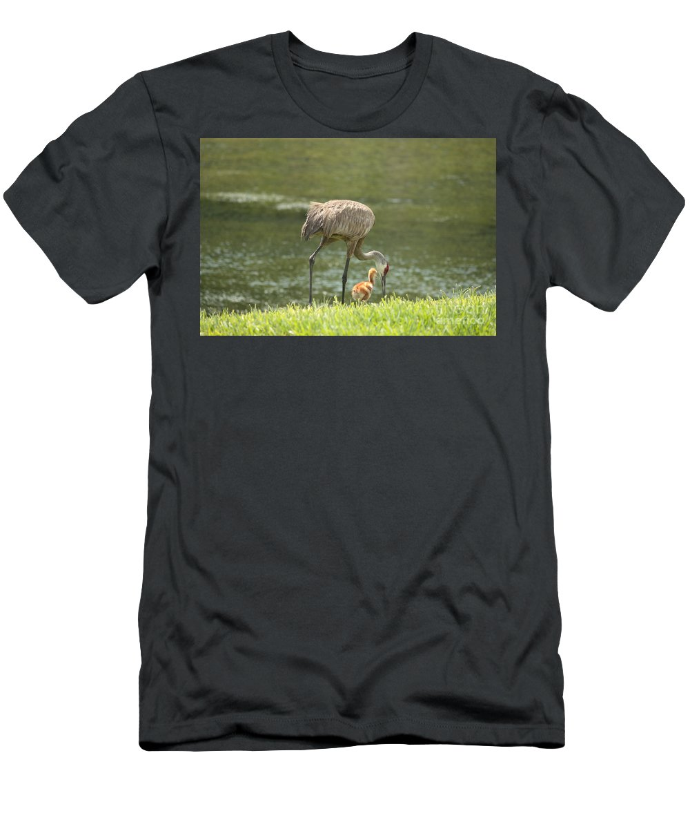 Sandhill Crane Men's T-Shirt (Athletic Fit) featuring the photograph Mama And Chick by Carol Groenen
