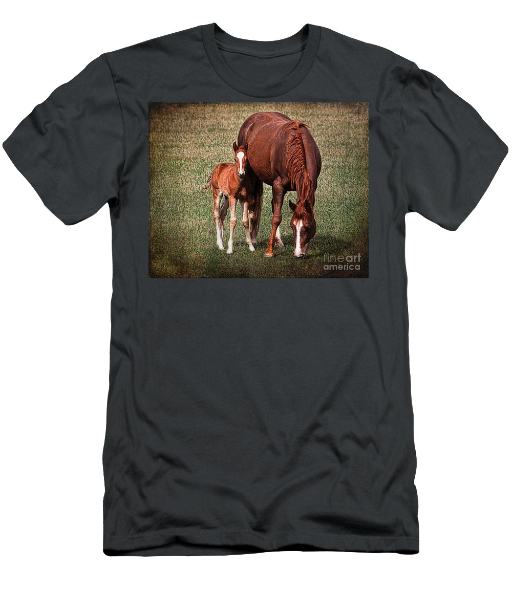 Meadow Men's T-Shirt (Athletic Fit) featuring the photograph Mare With Foal by Janice Pariza