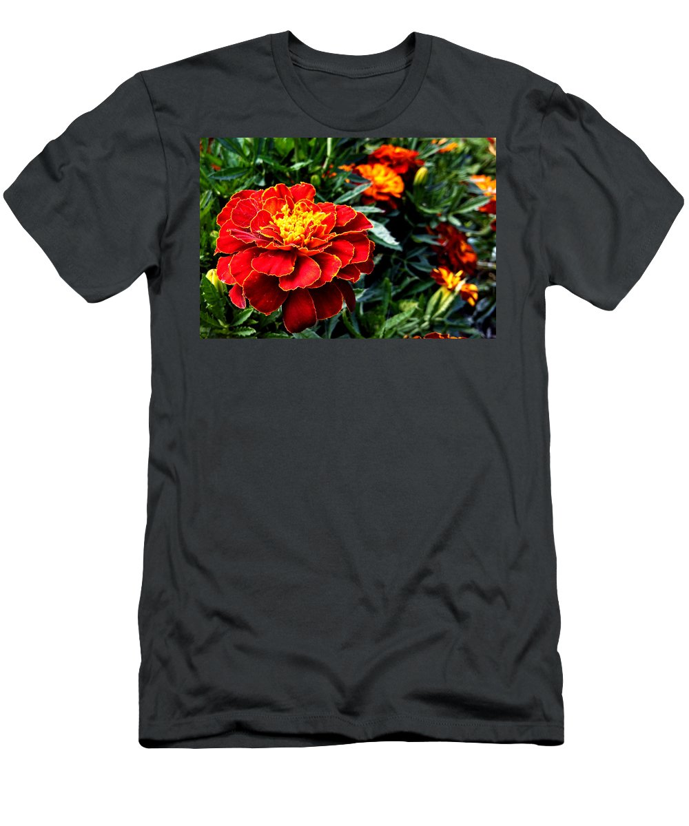 Marigold Men's T-Shirt (Athletic Fit) featuring the photograph Marigold by Kim Ruley