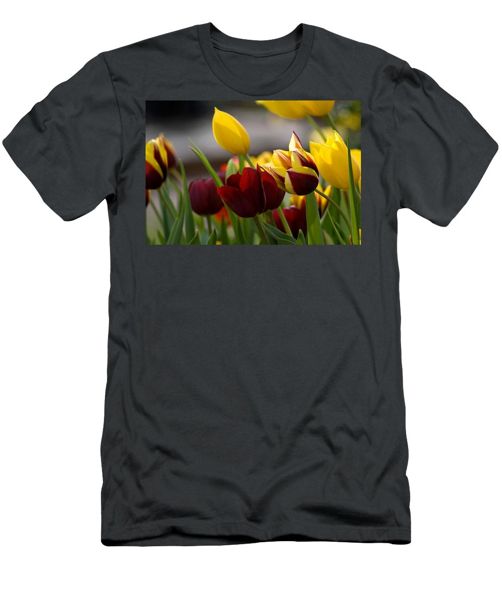 Flower Men's T-Shirt (Athletic Fit) featuring the photograph Maroon And Gold Tulips by Benjamin Reed