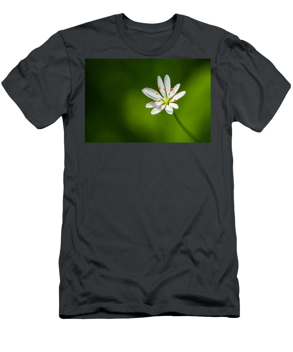 Flower Men's T-Shirt (Athletic Fit) featuring the photograph Meadow Candy - Featured 3 by Alexander Senin