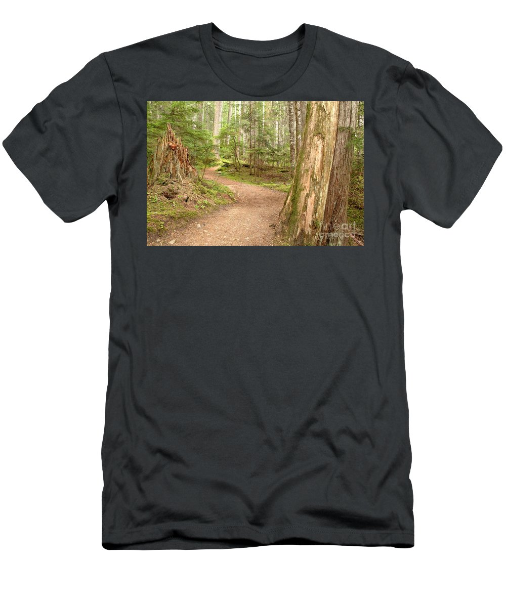 Cheakamus Rainforest Men's T-Shirt (Athletic Fit) featuring the photograph Meandering Along Cheakamus Lake by Adam Jewell