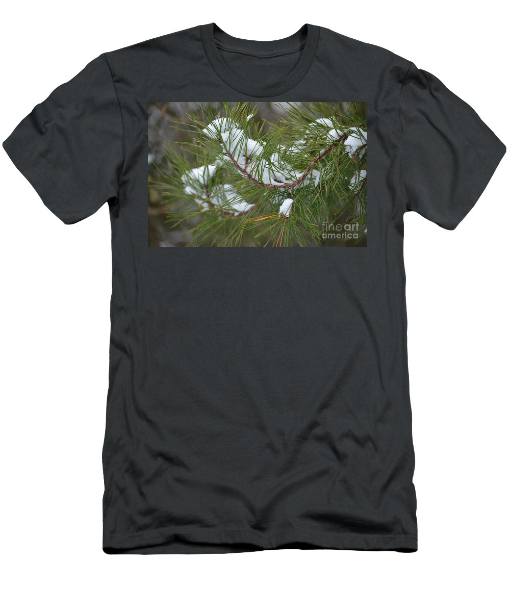 Melting Snow In The Pines Men's T-Shirt (Athletic Fit) featuring the photograph Melting Snow In The Pines by Maria Urso