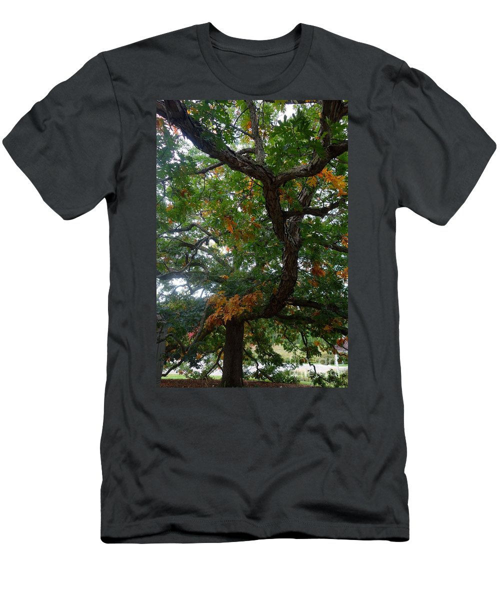 Tree Men's T-Shirt (Athletic Fit) featuring the photograph Mighty Fall Oak #2 by Jacqueline Athmann
