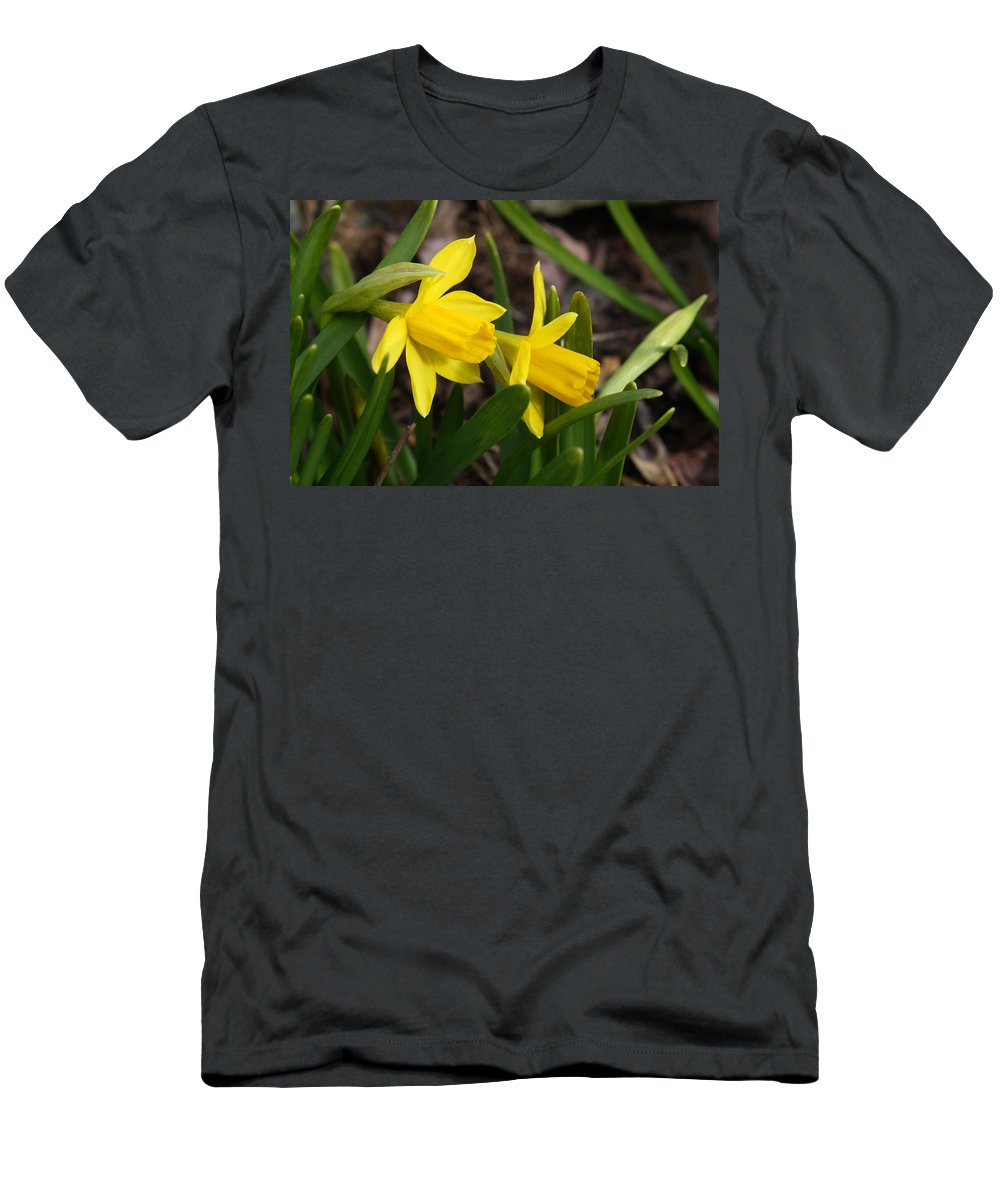 Mini Men's T-Shirt (Athletic Fit) featuring the photograph Mini Daffs by Kathryn Meyer