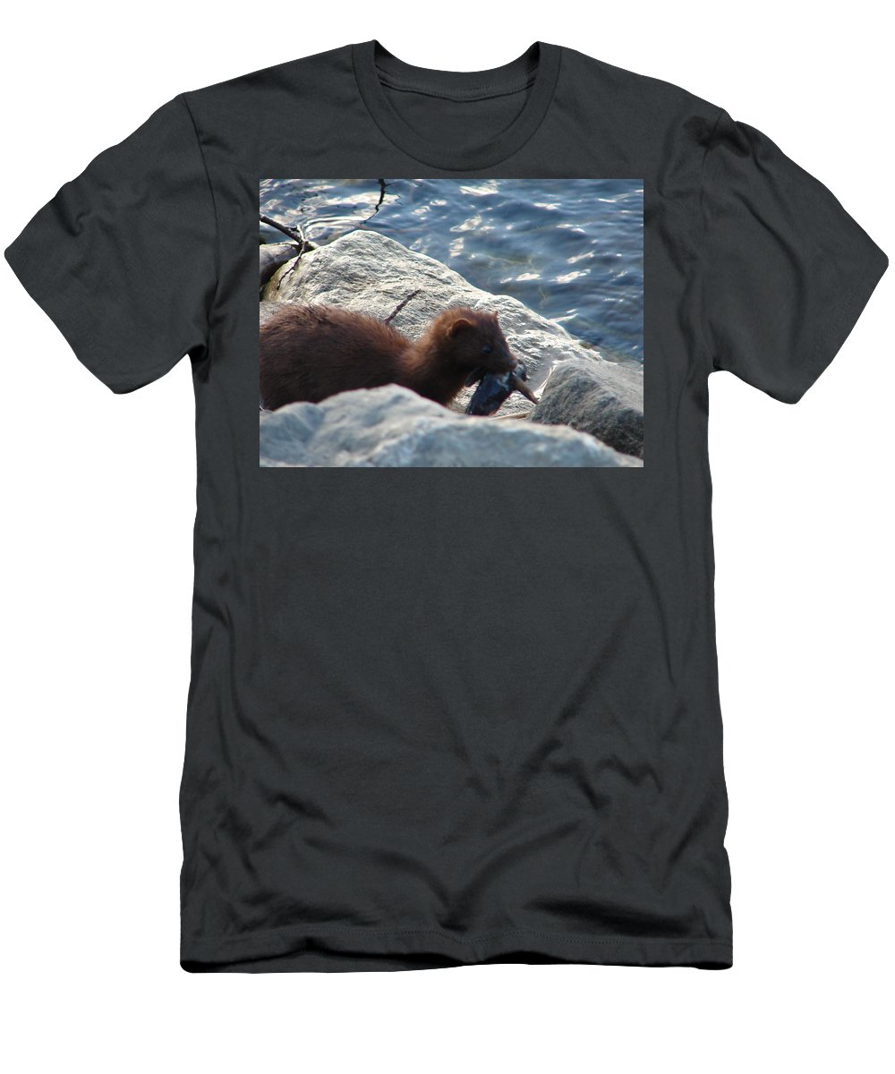 American Mink T-Shirt featuring the photograph Mink with a Round Goby by Randy J Heath
