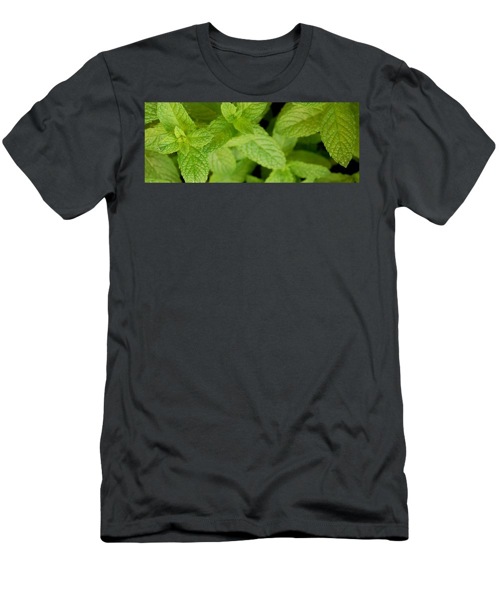 Mint Men's T-Shirt (Athletic Fit) featuring the photograph Mint by Gina Dsgn