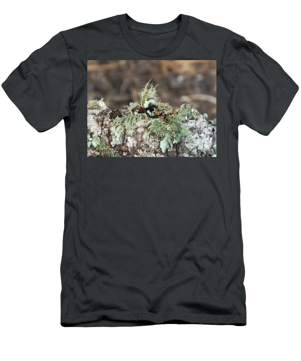 Moss Men's T-Shirt (Athletic Fit) featuring the photograph Misty Moss by Michele Nelson