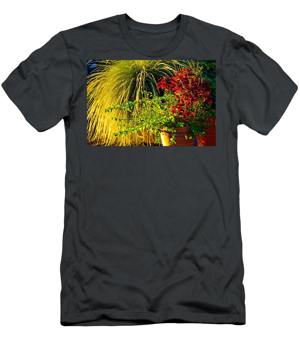 Morning Men's T-Shirt (Athletic Fit) featuring the photograph Morning Light by Gary Richards
