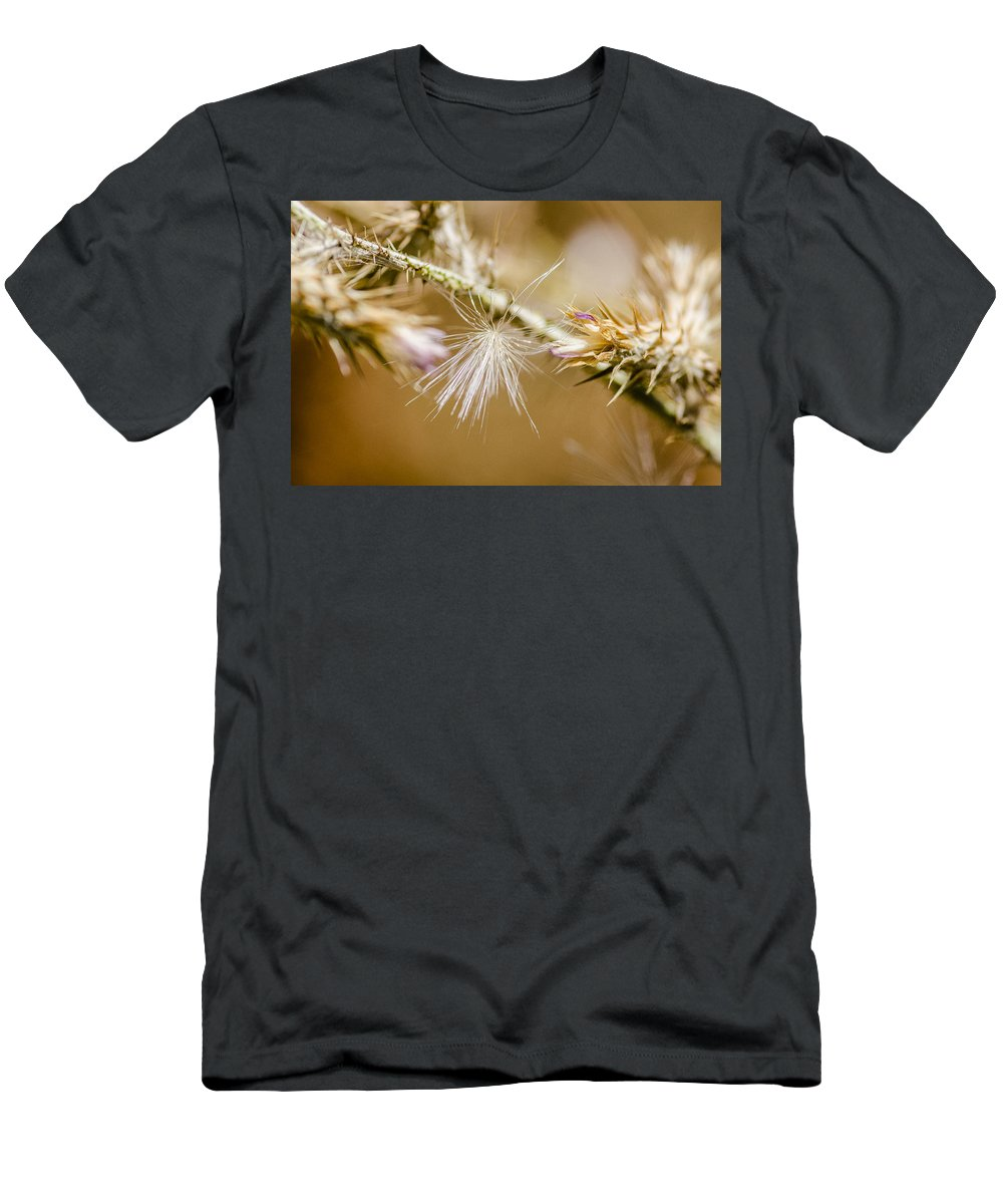 Bloom Photographs Men's T-Shirt (Athletic Fit) featuring the photograph Morning Lights by Sotiris Filippou