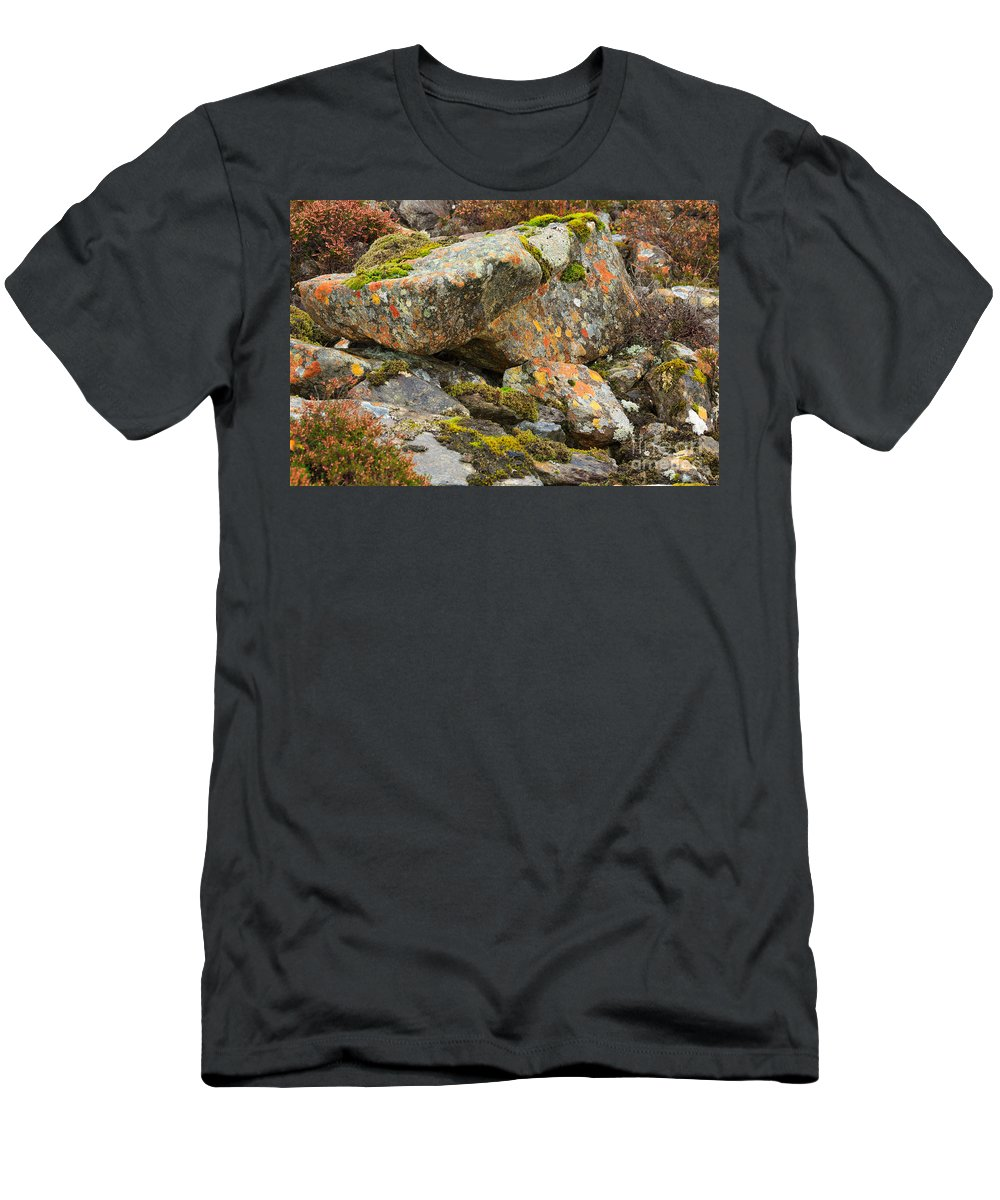 Crustose Men's T-Shirt (Athletic Fit) featuring the photograph Moss And Lichens In The Scottish Highlands by Louise Heusinkveld