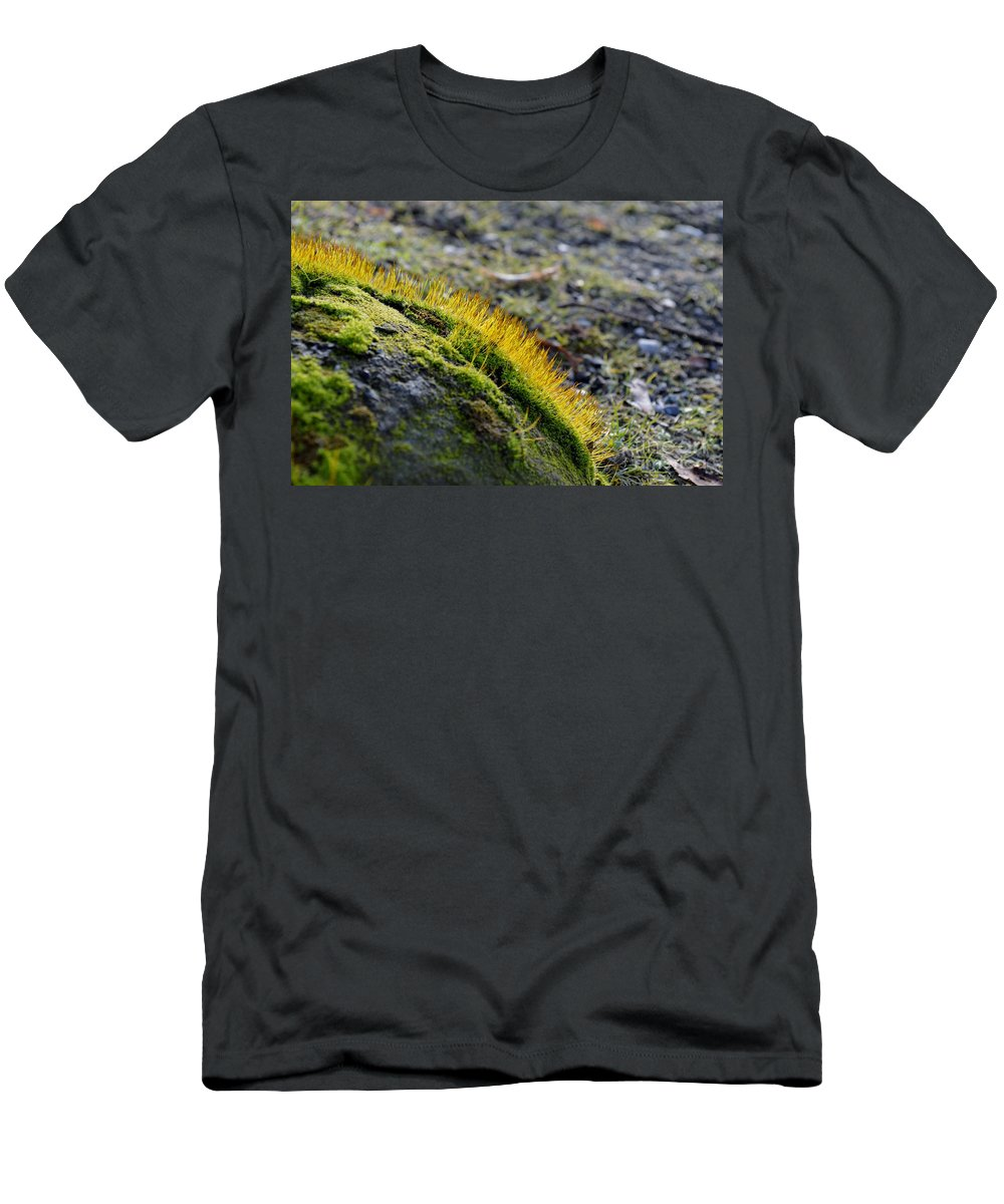 Close-up Men's T-Shirt (Athletic Fit) featuring the photograph Moss In The Light by Felicia Tica