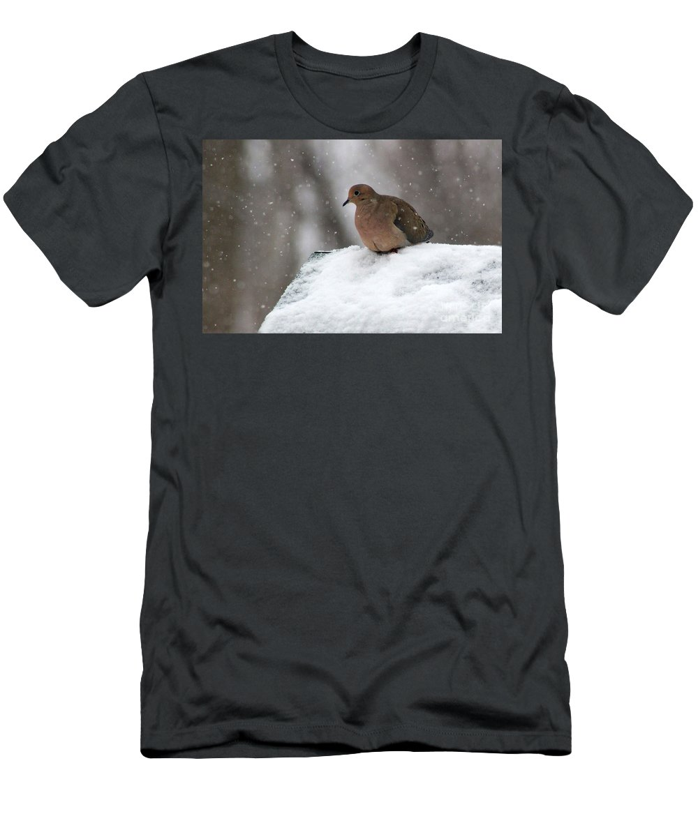 Mourning Dove Men's T-Shirt (Athletic Fit) featuring the photograph Mourning Dove In Snow by Karen Adams