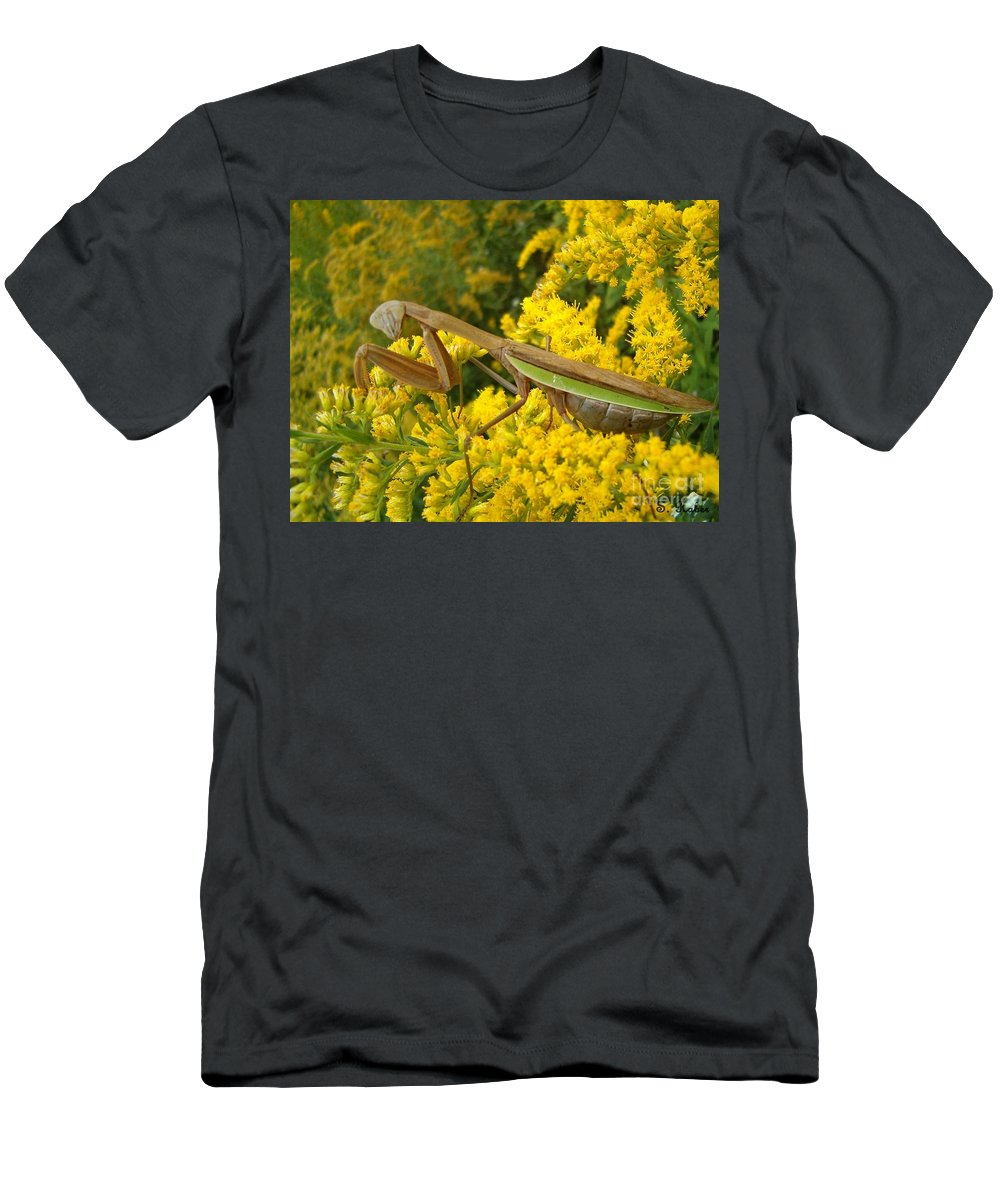 Praying Mantis Men's T-Shirt (Athletic Fit) featuring the photograph Mr. Mantis by Sara Raber