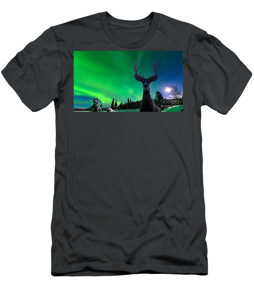 Animal Men's T-Shirt (Athletic Fit) featuring the photograph Mule Deer And Aurora Borealis Over Taiga Forest by Stephan Pietzko