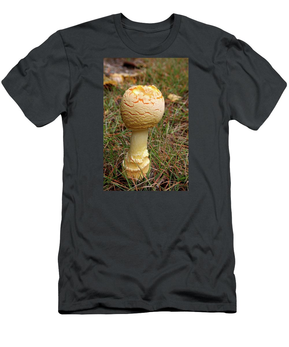 Mushroom T-Shirt featuring the photograph Mushroom by Christiane Schulze Art And Photography